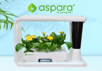 Enjoy Up to 30% Off on Aspara Smart Grower